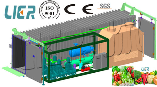 Vegetable &Fruit Fast Cooling Machine/Vacuum Cooler